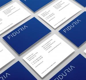 <span>Fiduria Treuhand AG</span><i>→</i>